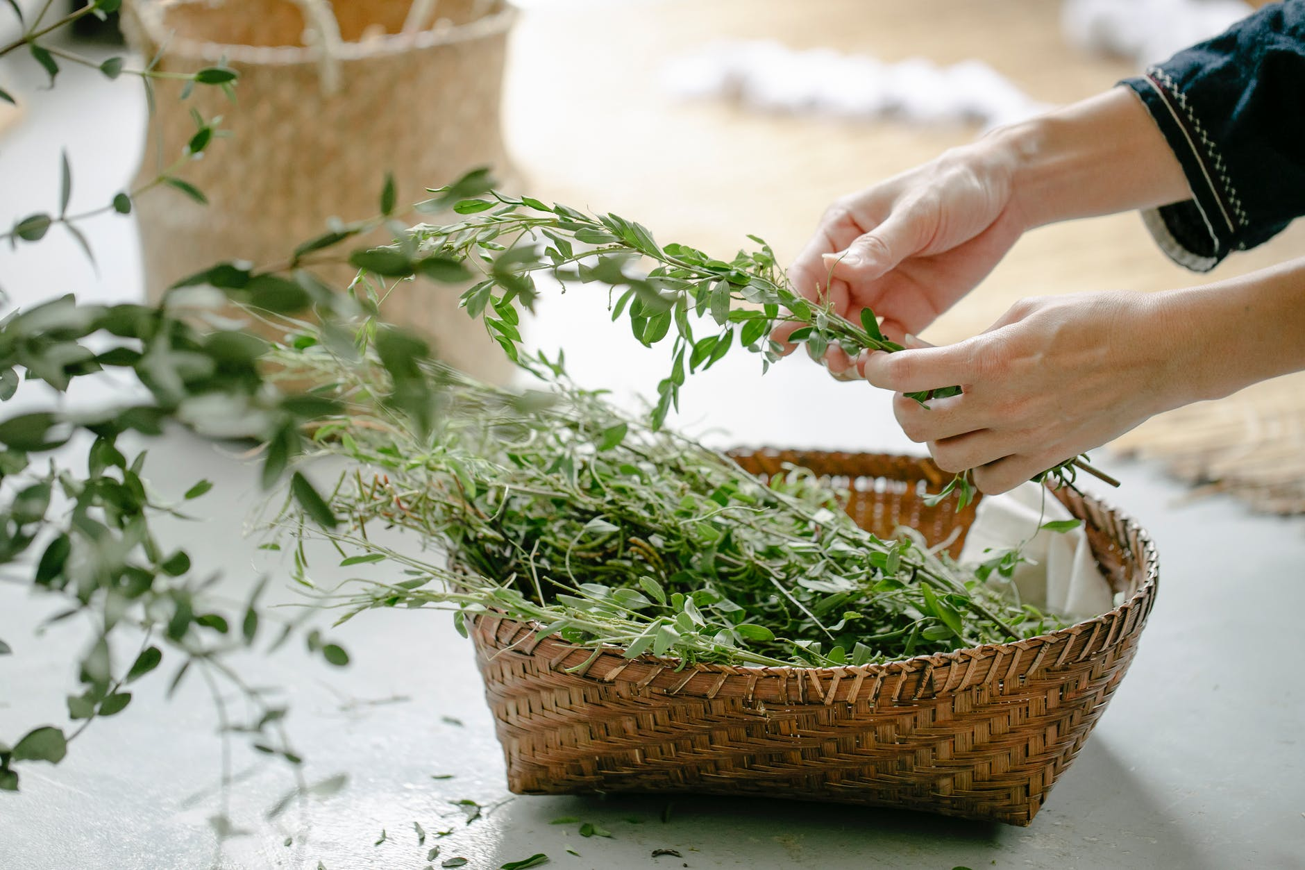 woman with herbs in wicker basket